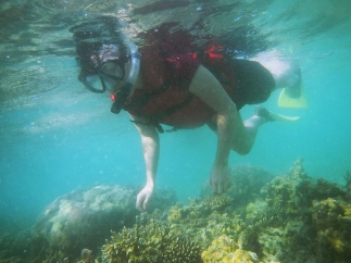 Coral Reef at Burung Island