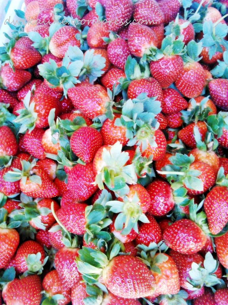 Jangan lewatkan oleh - oleh Strawberry manis dari Ciwidey ini